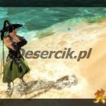 gry mmorpg swordsman online x2