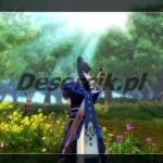 gry mmorpg swordsman online x3