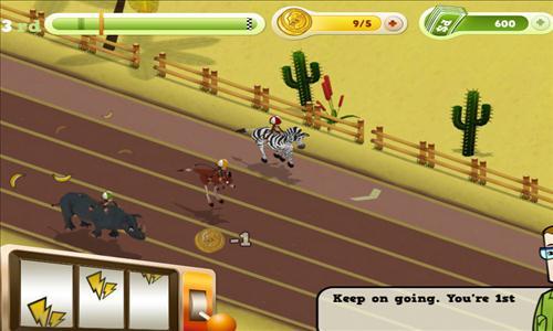zoo derby wyścig