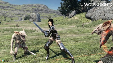 Wolf Knights2