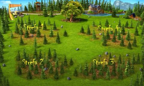 podział na strefy lesnej polany