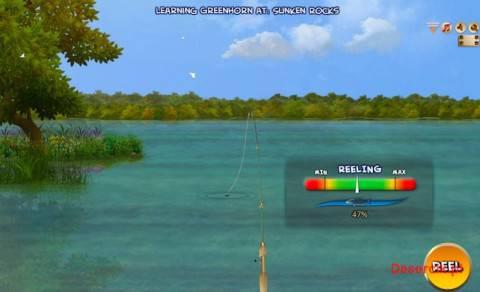 fish pro game 001