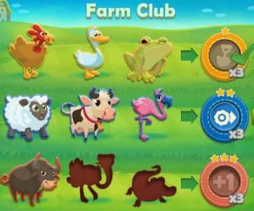 kolekcje farm club