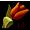Grządka czerwonych tulipanów