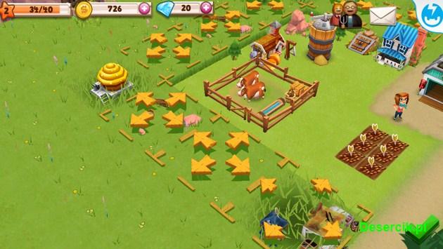 Farm Story 2 004
