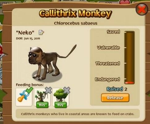 Co oznacza w profilu zwierzaka endangerment?