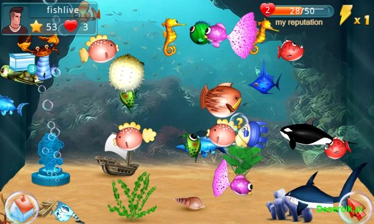 Fish Live 002