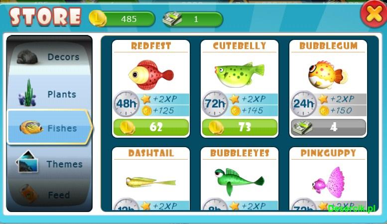 Fish Live 003