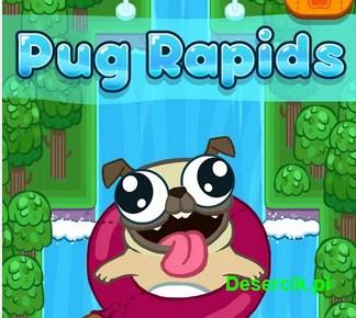 Pug Rapids – ten mops pobije Twoje serce