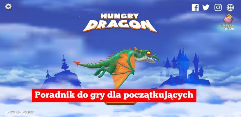Hungry Dragon: Poradnik dla nowych graczy