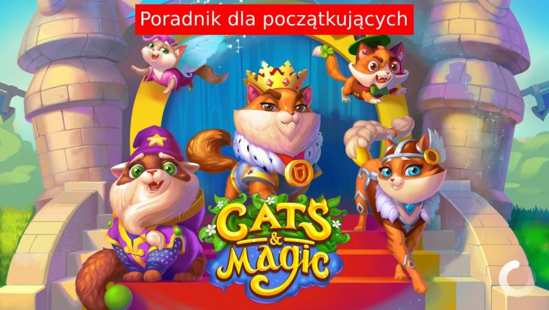 Cats & Magic: Dream Kingdom – Poradnik dla nowych graczy