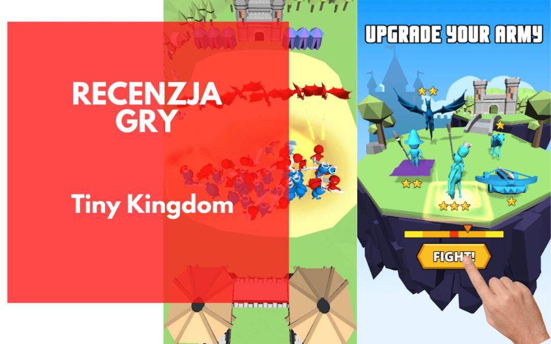 Tiny Kingdom: Recenzja gry